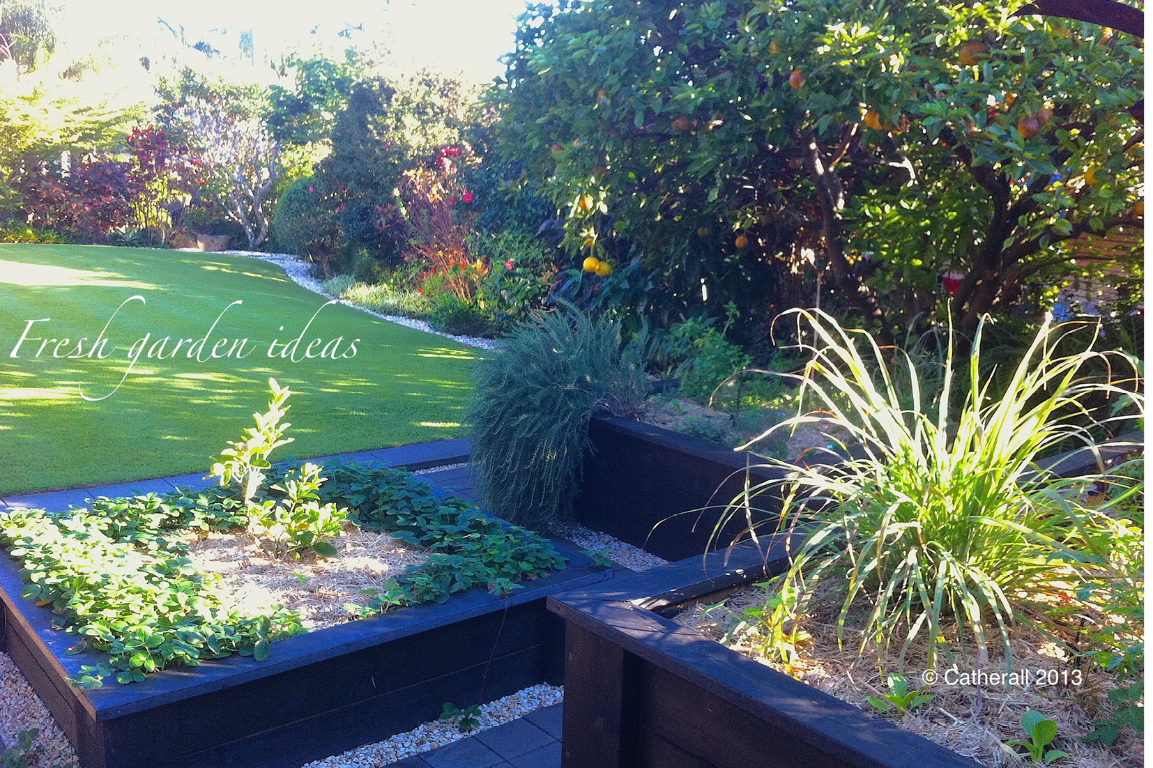 Sunshine Coast Structural Landscaping with fresh garden ideas for the family to enjoy
